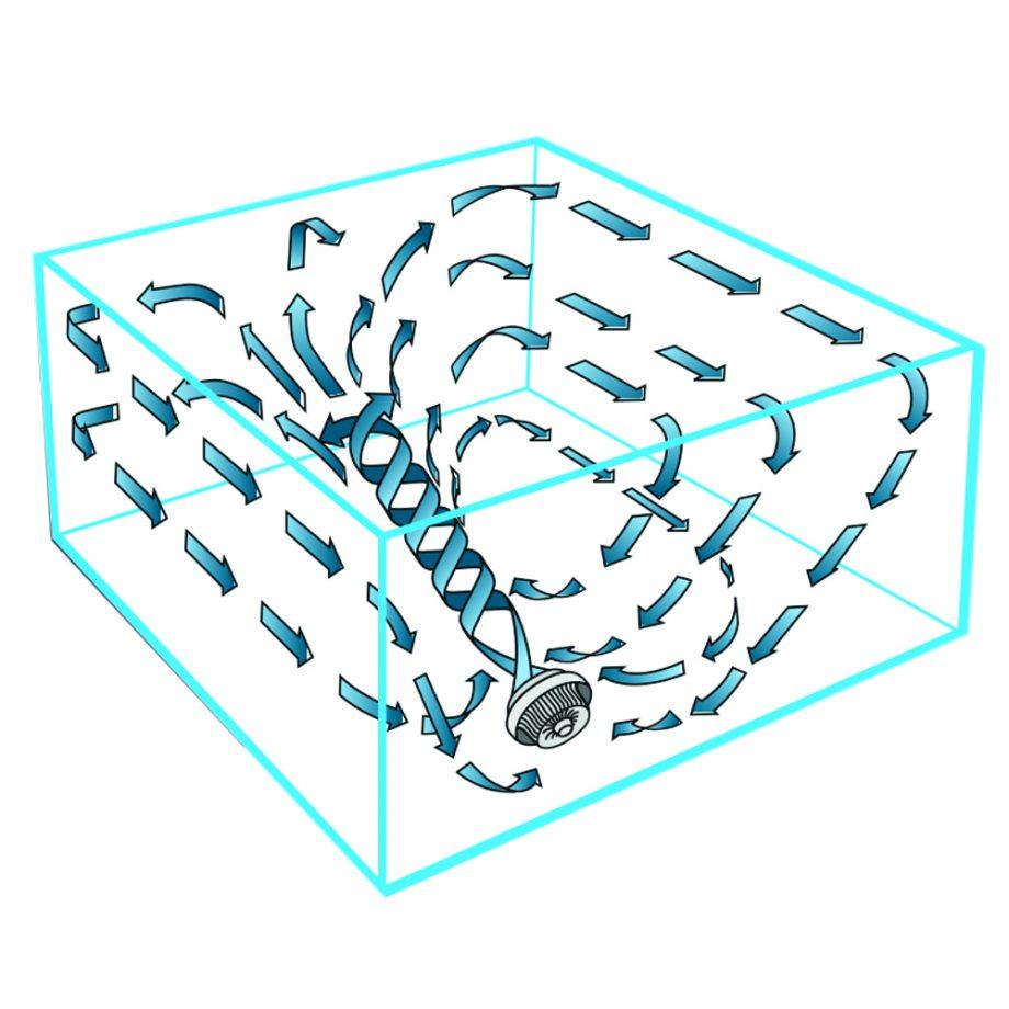 Ventilator Zirkulation raumventilator